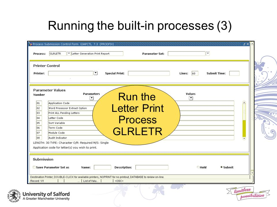 Running the built-in processes (2) Run the Letter Extract GLBLSEL