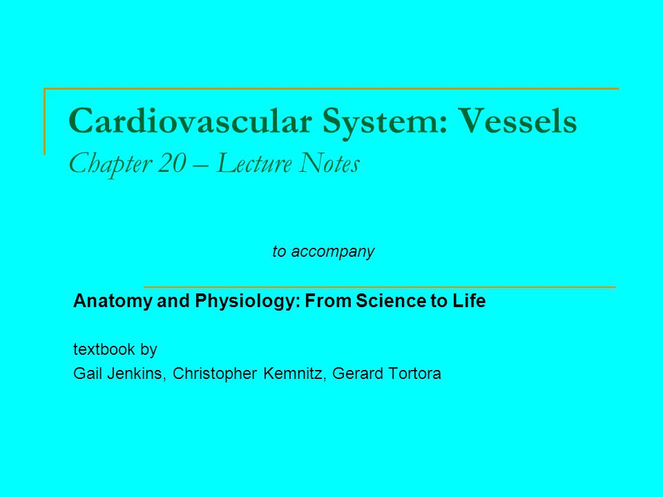 Chapter Overview 20.1 Arterial Blood Flow Overview 20.2 Capillaries 20.3 Venules and Veins 20.4 Capillary Exchange 20.5 Blood Flow 20.6 Blood Pressure Regulation 20.7 Pulse 20.8 Systemic and Pulmonary Circuits