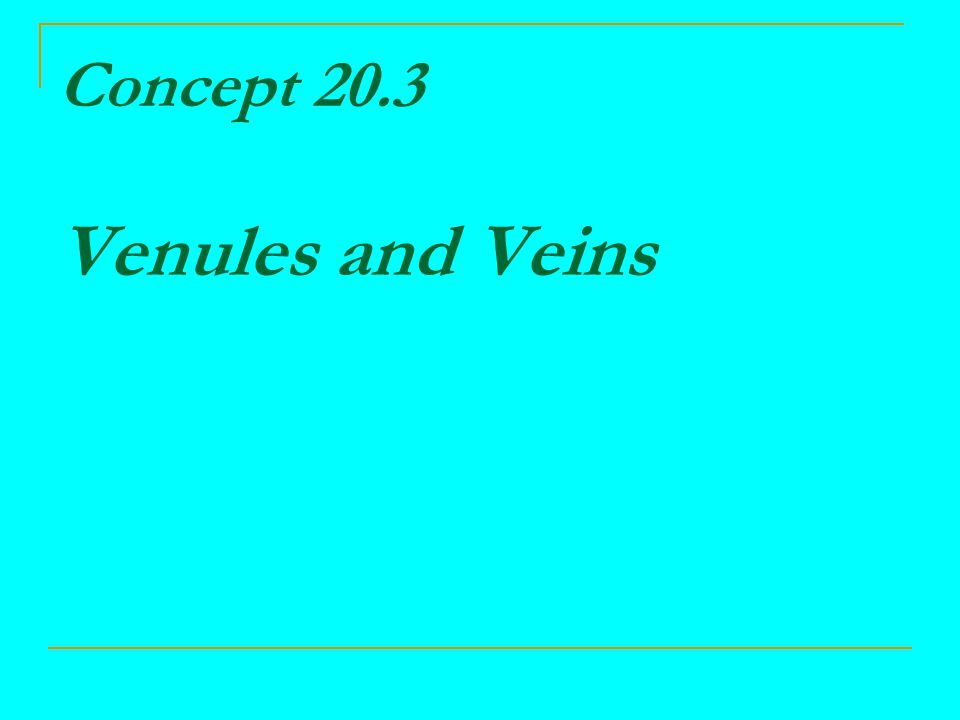 Concept 20.3 Venules and Veins