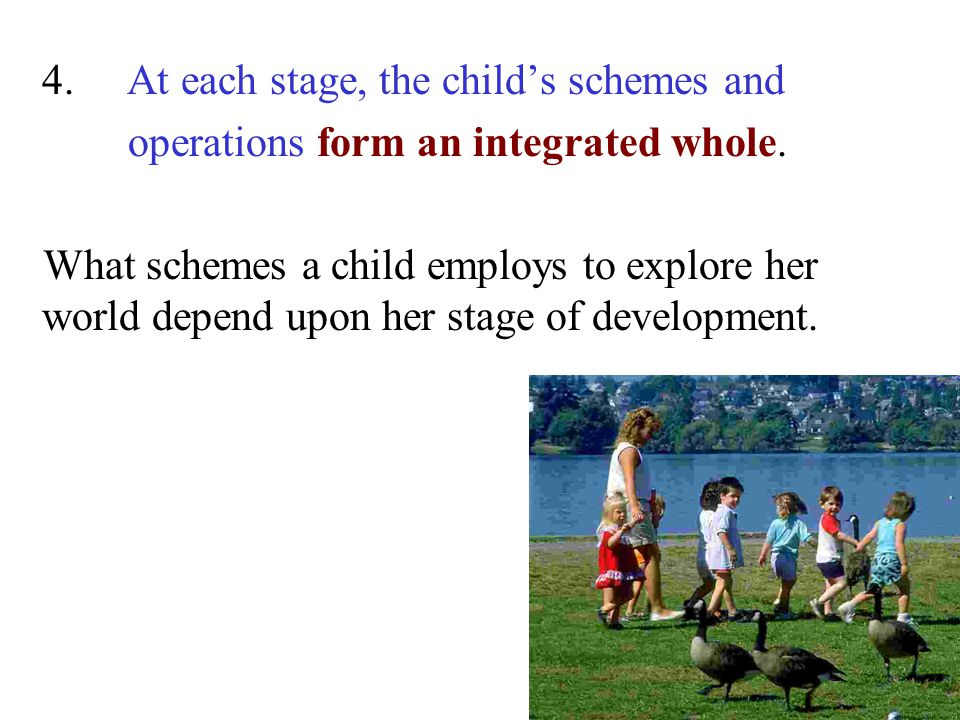 4. At each stage, the child's schemes and operations form an integrated whole. What schemes a child employs to explore her world depend upon her stage
