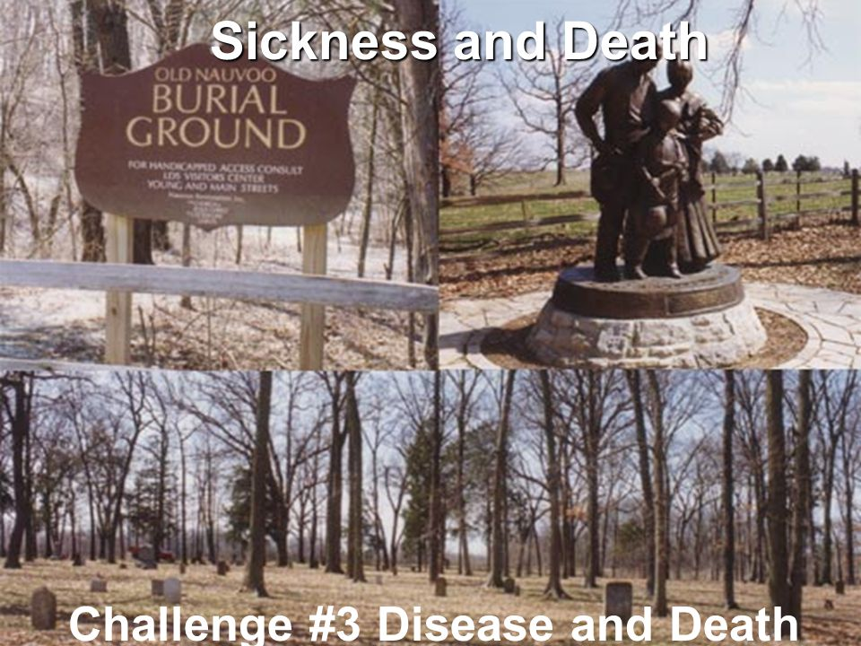 Sickness and Death Challenge #3 Disease and Death