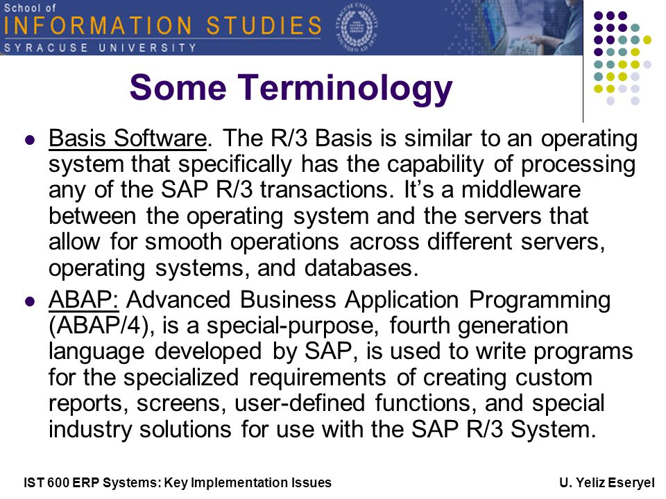 IST 600 ERP Systems: Key Implementation Issues U. Yeliz Eseryel Some Terminology Basis Software.