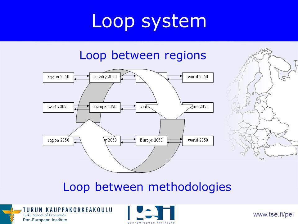 www.tse.fi/pei Loop system Loop between regions Loop between methodologies