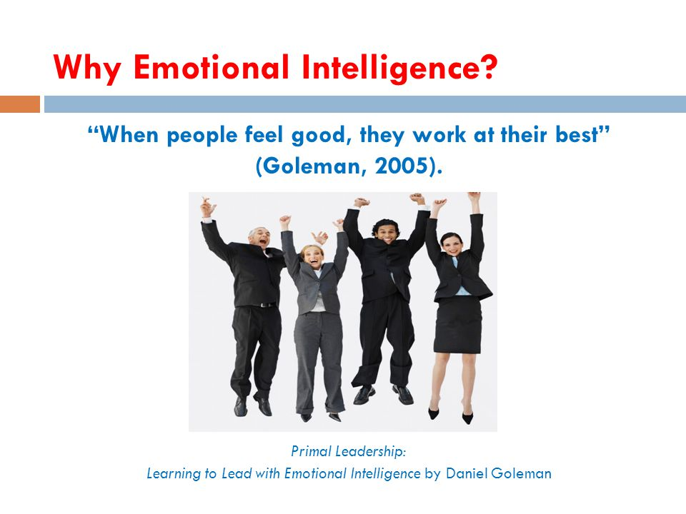 Why Emotional Intelligence. 19 When people feel good, they work at their best (Goleman, 2005).