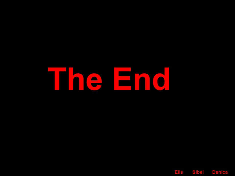 The End ElisSibel Denica
