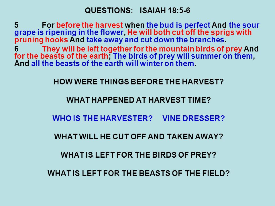 QUESTIONS:ISAIAH 18:5-6 5For before the harvest when the bud is perfect And the sour grape is ripening in the flower, He will both cut off the sprigs with pruning hooks And take away and cut down the branches.