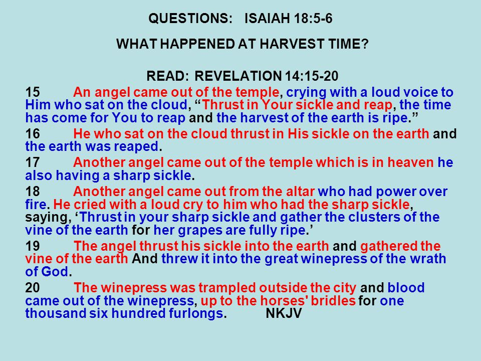 QUESTIONS:ISAIAH 18:5-6 WHAT HAPPENED AT HARVEST TIME.