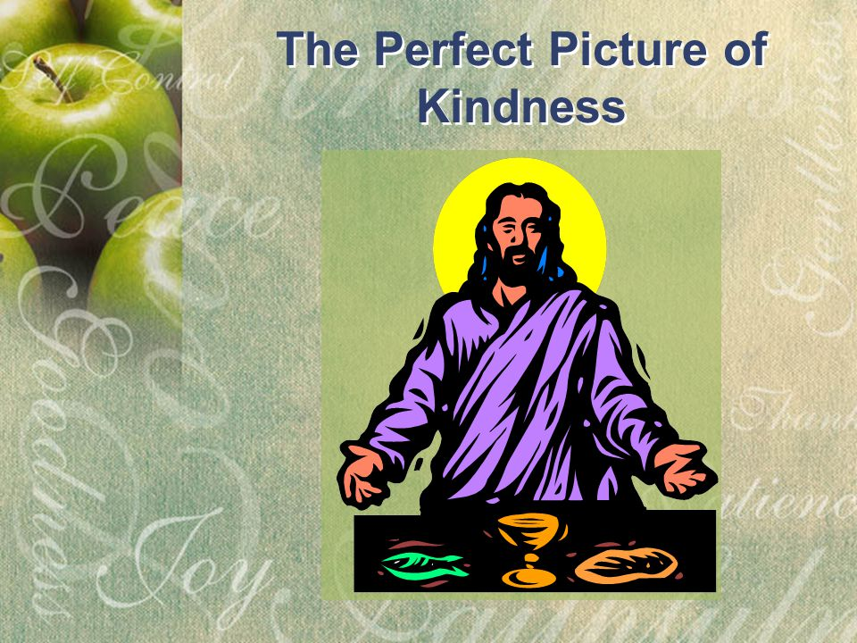 The Perfect Picture of Kindness The Perfect Picture of Kindness