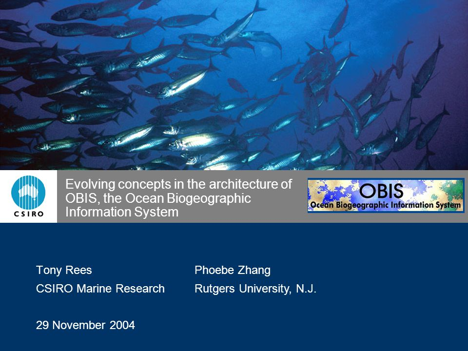 Evolving concepts in the architecture of OBIS, the Ocean Biogeographic Information System Tony Rees CSIRO Marine Research 29 November 2004 Phoebe Zhang Rutgers University, N.J.