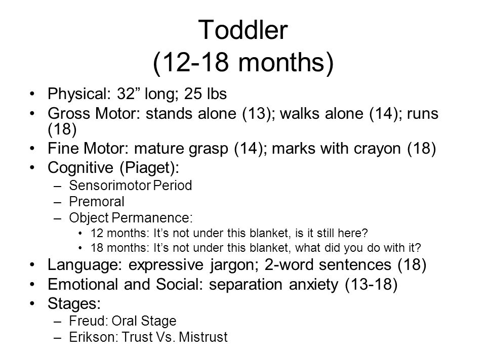 "Toddler (12-18 months) Physical: 32"" long; 25 lbs Gross Motor: stands alone (13); walks alone (14); runs (18) Fine Motor: mature grasp (14); marks wit"