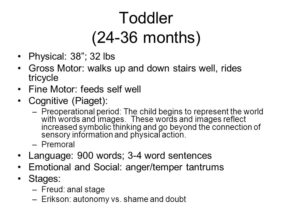 "Toddler (24-36 months) Physical: 38""; 32 lbs Gross Motor: walks up and down stairs well, rides tricycle Fine Motor: feeds self well Cognitive (Piaget)"