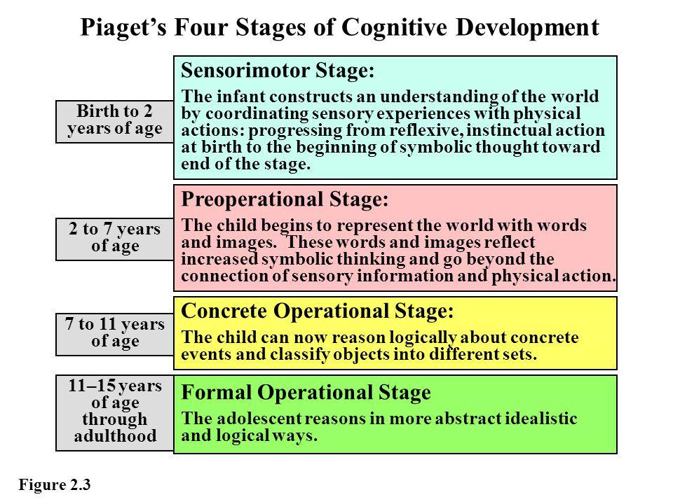 Piaget's Stages of Development 1.Sensorimotor stage (Infancy).