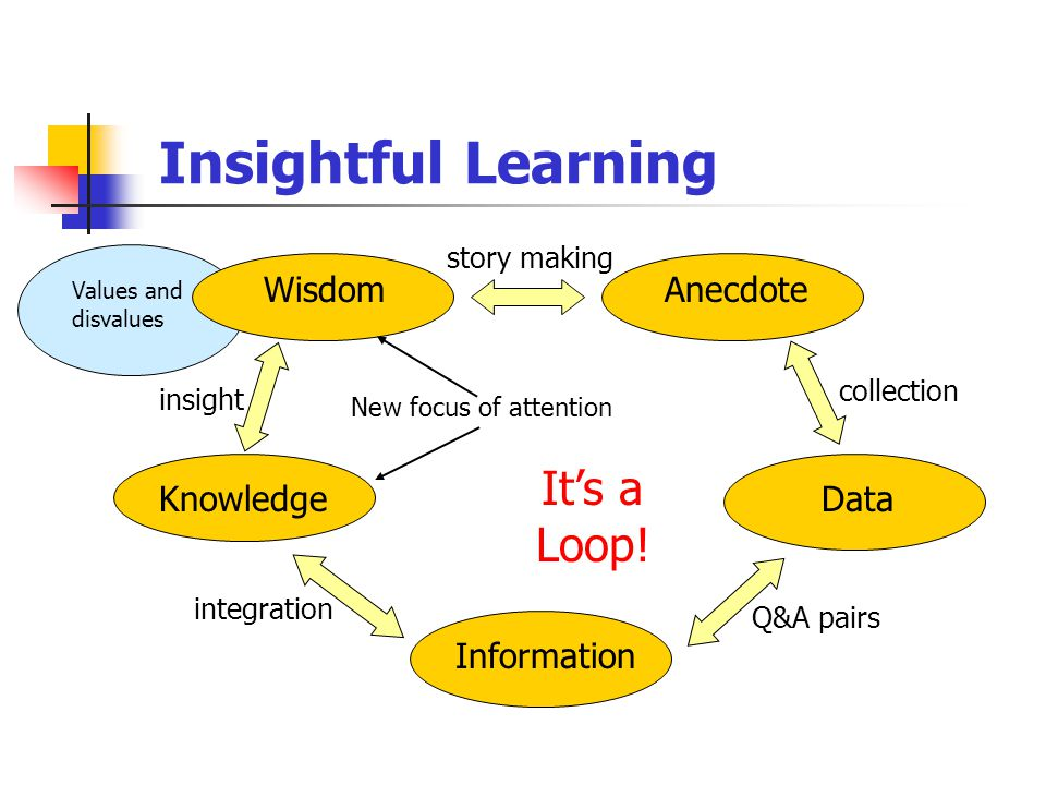 Insightful Learning Data Information Knowledge New focus of attention WisdomAnecdote Values and disvalues insight integration Q&A pairs collection story making It's a Loop!
