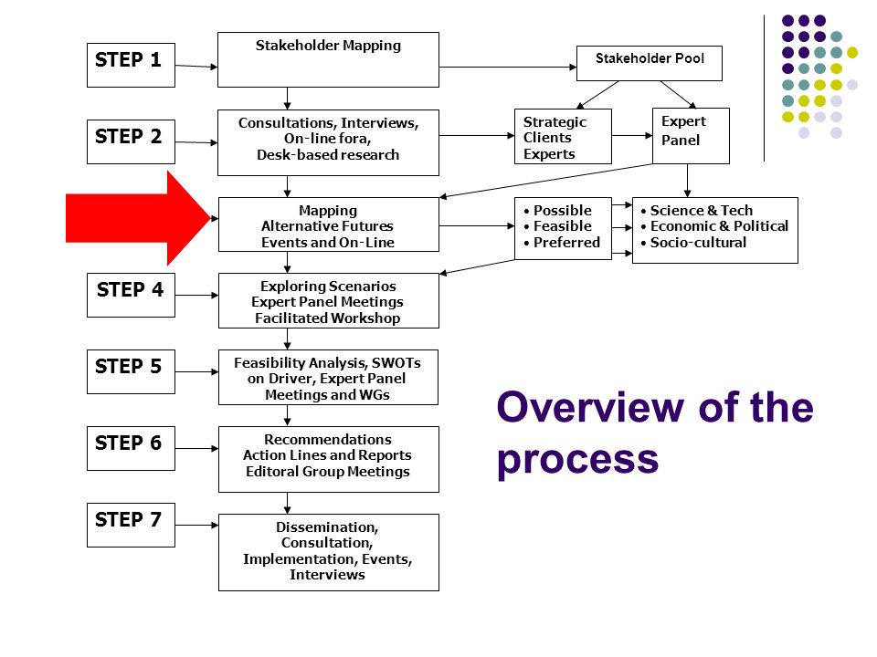 Overview of the process STEP 1 STEP 2 STEP 3 STEP 4 STEP 5 STEP 6 Stakeholder Mapping Stakeholder Pool Strategic Clients Experts Consultations, Interv