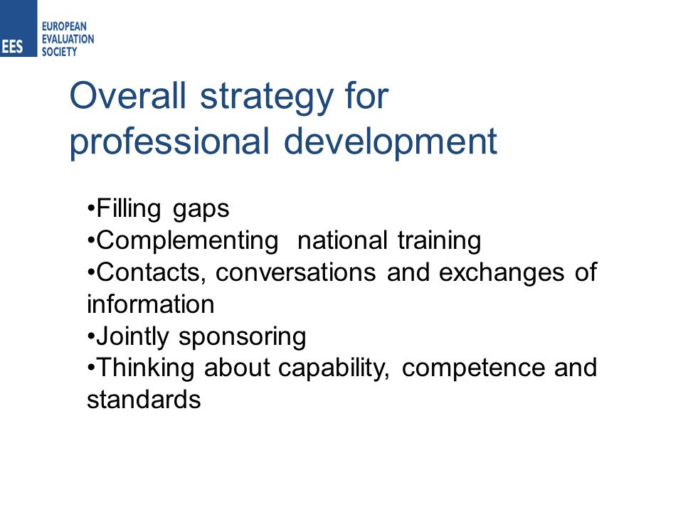 Overall strategy for professional development Filling gaps Complementing national training Contacts, conversations and exchanges of information Jointly sponsoring Thinking about capability, competence and standards
