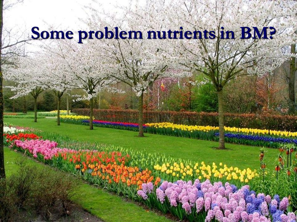 Some problem nutrients in BM?