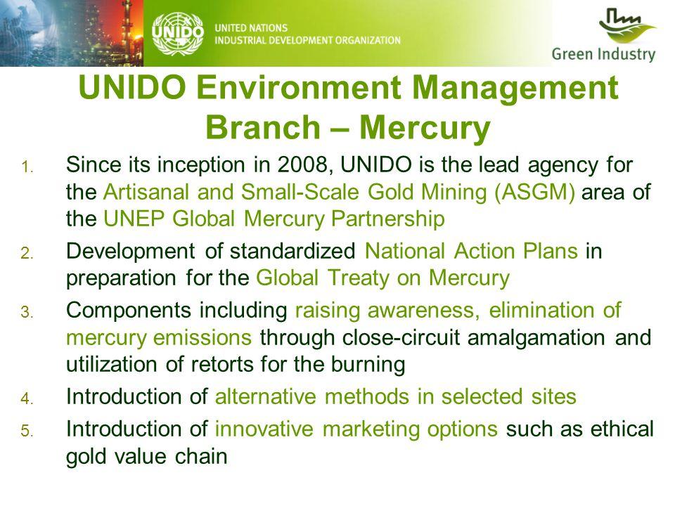 UNIDO Environment Management Branch – Mercury 1.