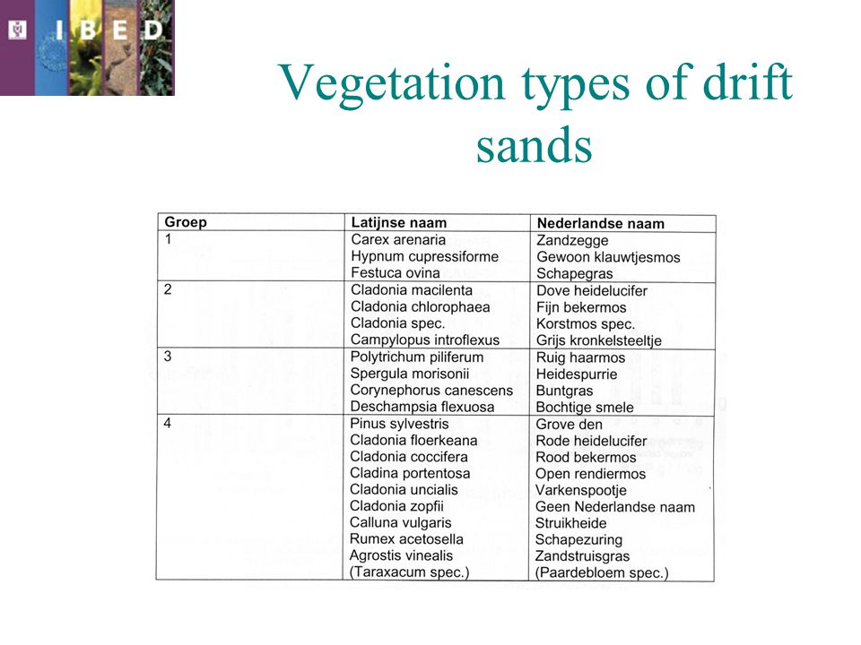 Vegetation types of drift sands