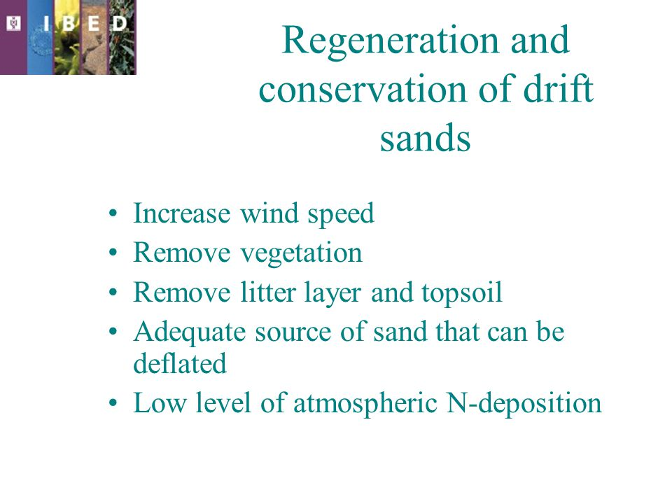 Regeneration and conservation of drift sands Increase wind speed Remove vegetation Remove litter layer and topsoil Adequate source of sand that can be deflated Low level of atmospheric N-deposition Re