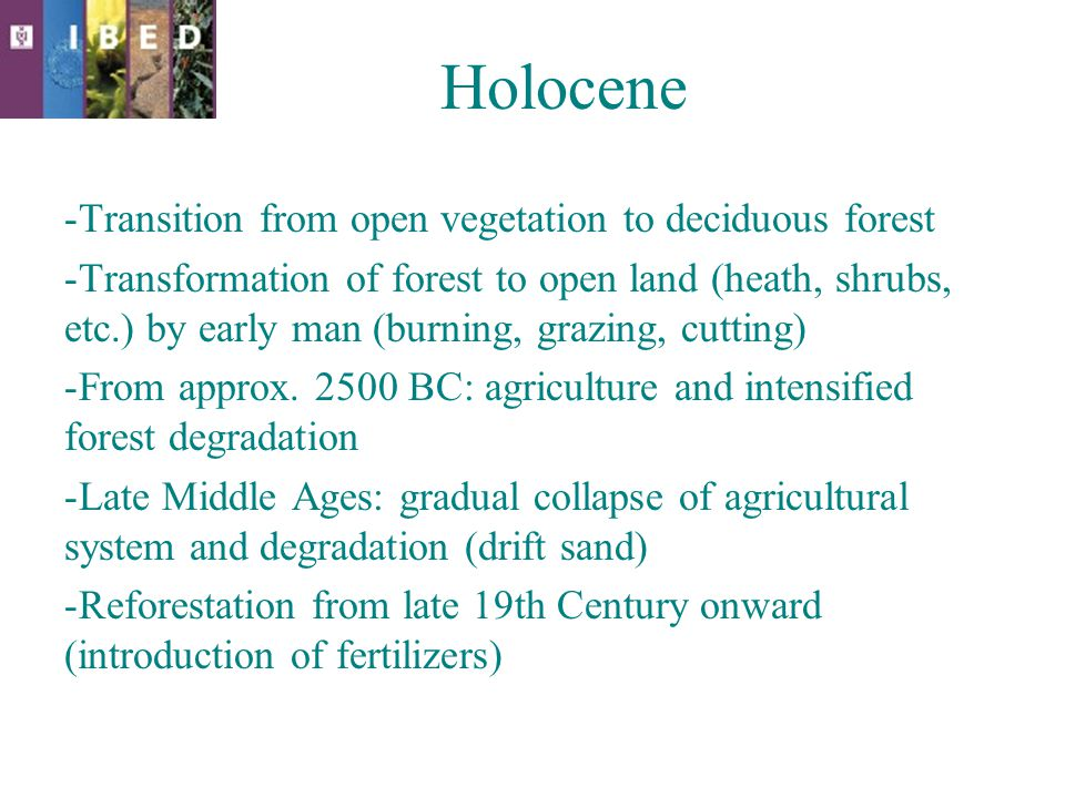 Holocene -Transition from open vegetation to deciduous forest -Transformation of forest to open land (heath, shrubs, etc.) by early man (burning, grazing, cutting) -From approx.