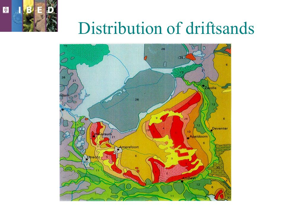 Distribution of driftsands