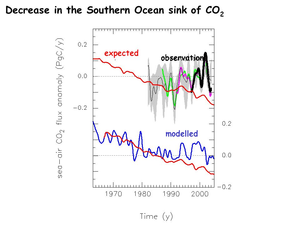 Decrease in the Southern Ocean sink of CO 2 modelled expected observations
