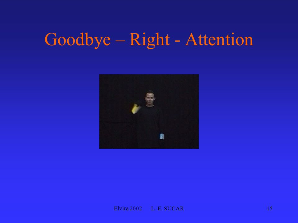Elvira 2002 L. E. SUCAR15 Goodbye – Right - Attention