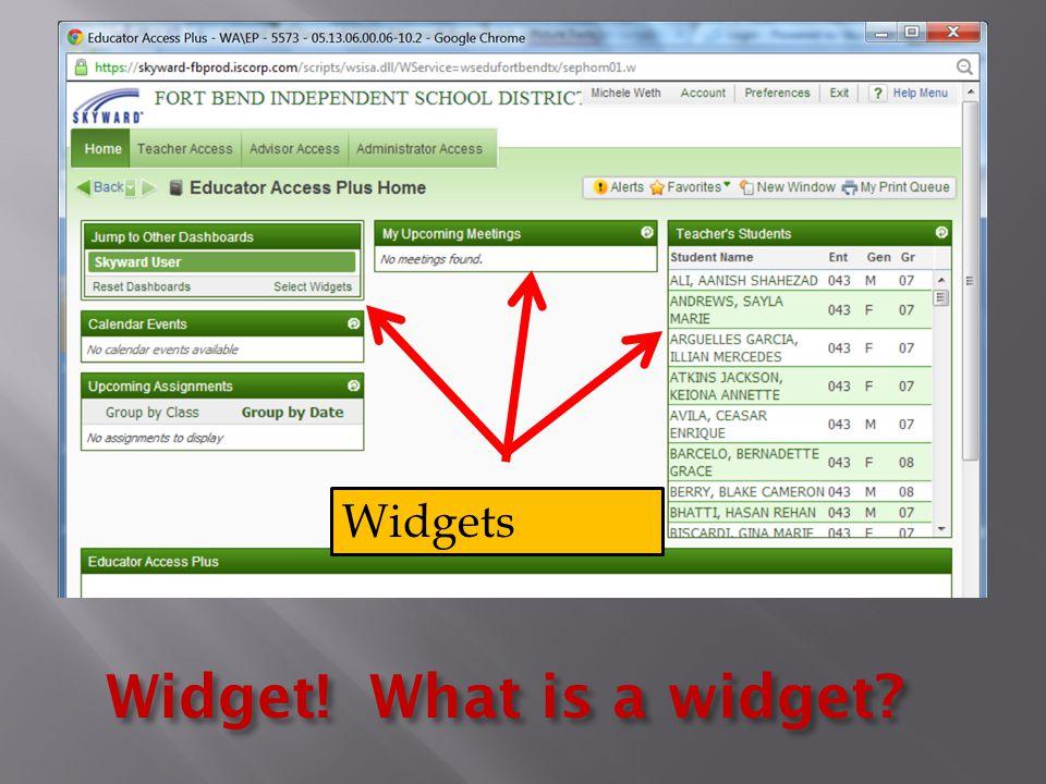 Widgets Widget! What is a widget?