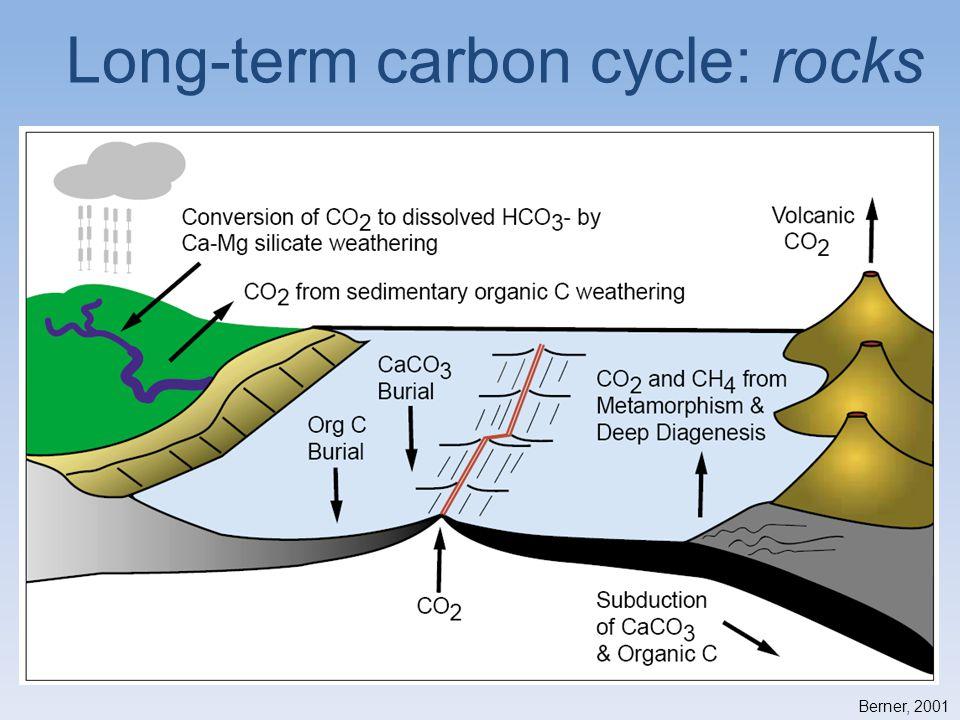Berner, 2001 Long-term carbon cycle: rocks