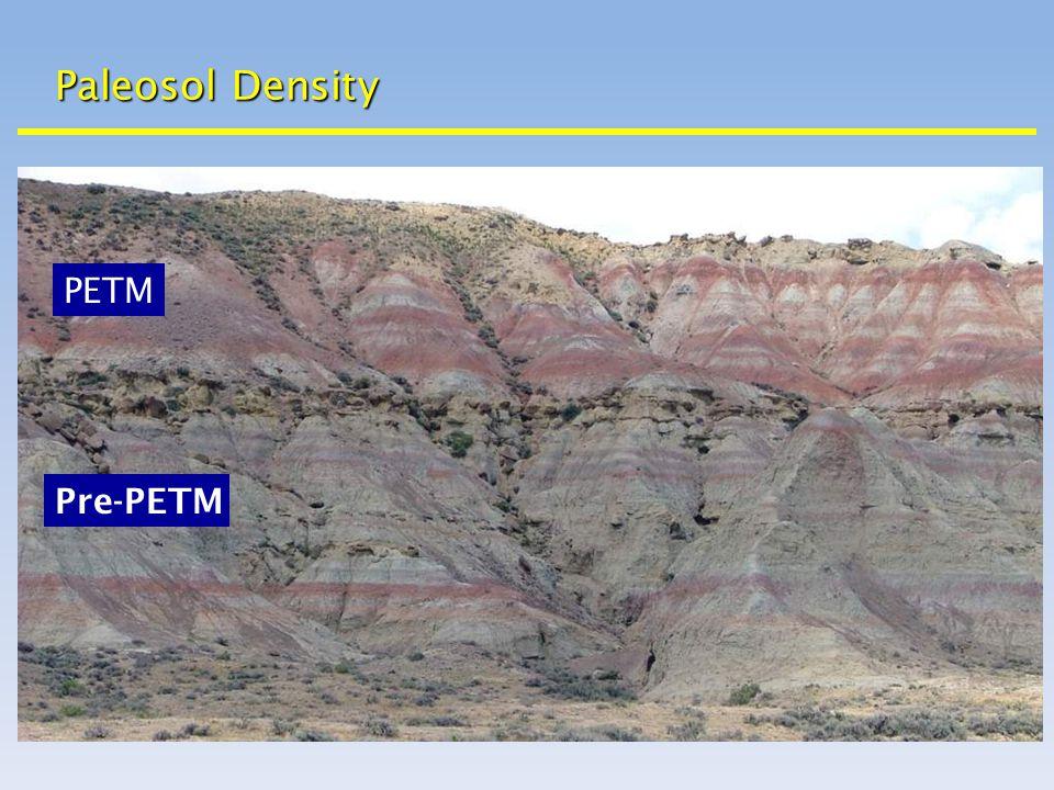 Paleosol Density Pre-PETM PETM