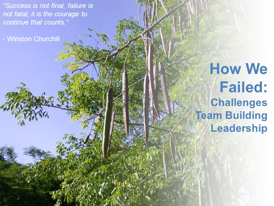 """How We Failed: Challenges Team Building Leadership """"Success is not final, failure is not fatal; it is the courage to continue that counts."""" - Winston"""