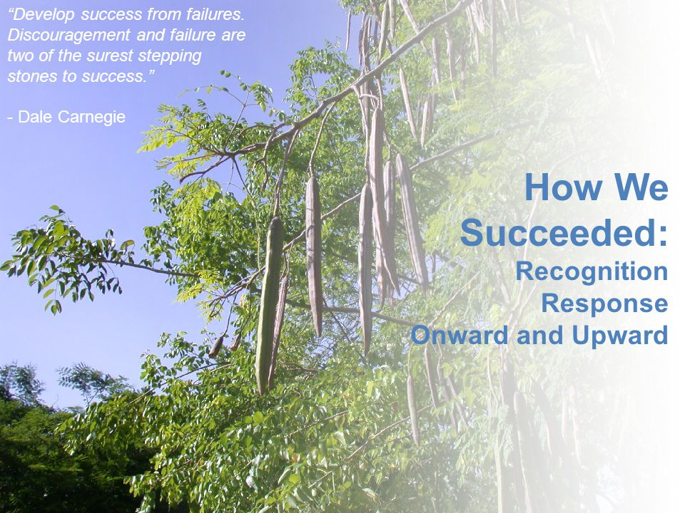"""How We Succeeded: Recognition Response Onward and Upward """"Develop success from failures. Discouragement and failure are two of the surest stepping sto"""