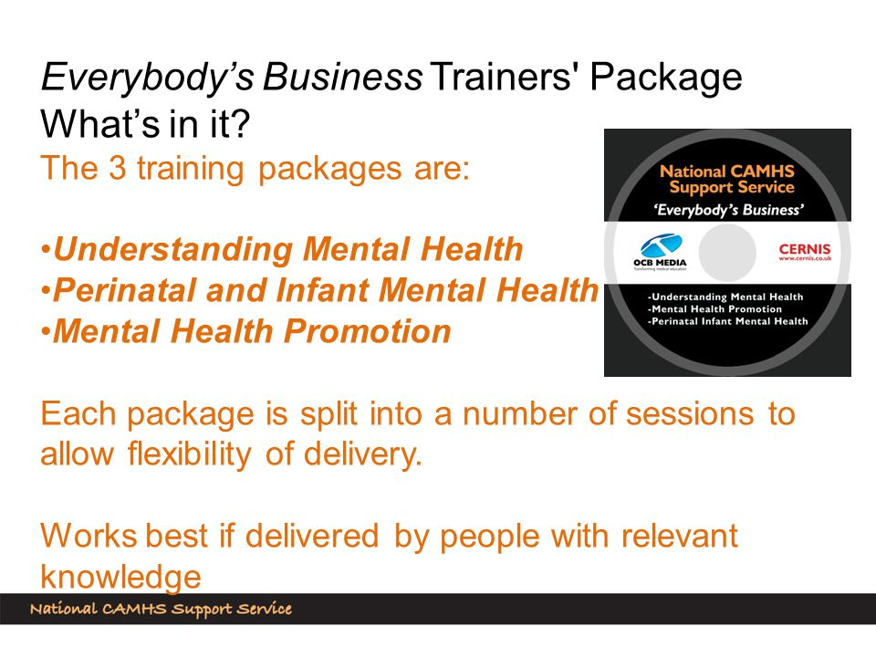 Everybody's Business Trainers Package What's in it.