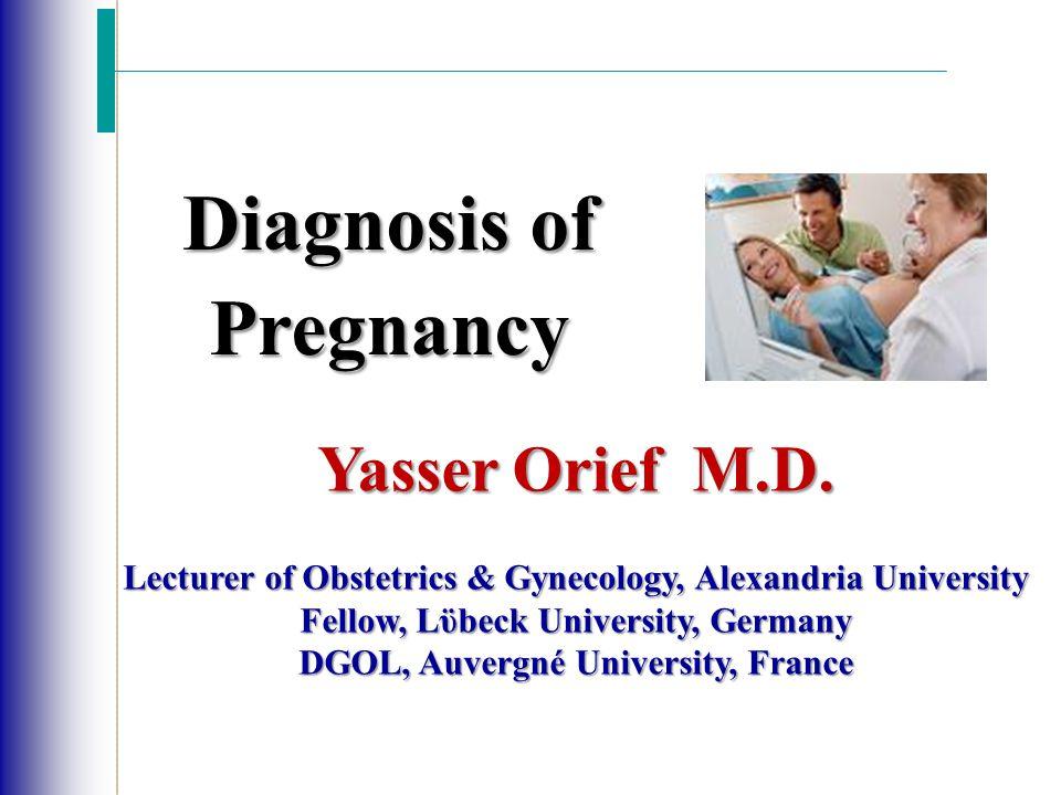 Yasser Orief M.D.