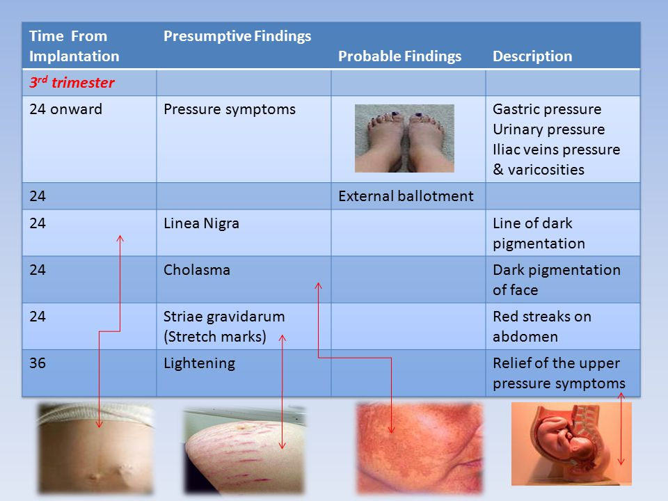Positive Signs of Pregnancy 1.