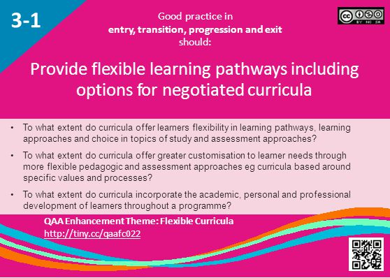 To what extent do curricula offer learners flexibility in learning pathways, learning approaches and choice in topics of study and assessment approaches.