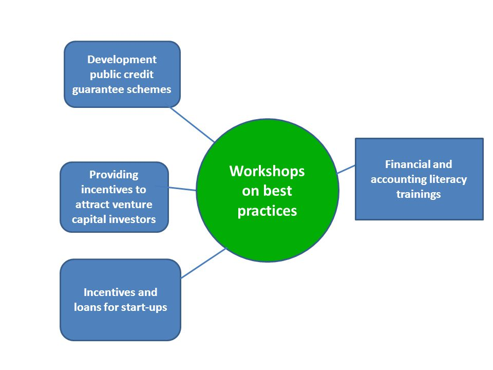 Development public credit guarantee schemes Providing incentives to attract venture capital investors Workshops on best practices Incentives and loans