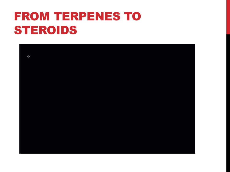 FROM TERPENES TO STEROIDS