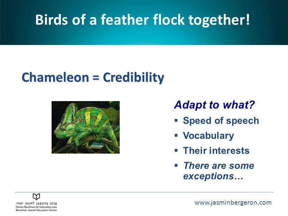 www.jasminbergeron.com Chameleon = Credibility Chameleon = Credibility Birds of a feather flock together! Adapt to what?  Speed of speech  Vocabular