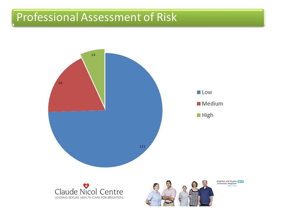 Professional Assessment of Risk
