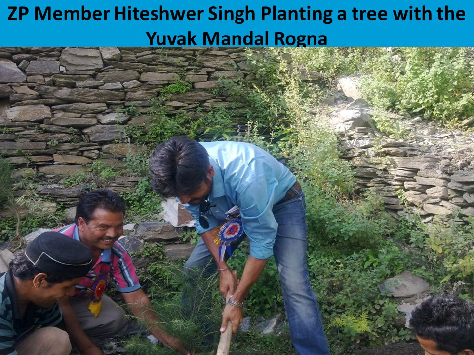 ZP Member Hiteshwer Singh Planting a tree with the Yuvak Mandal Rogna