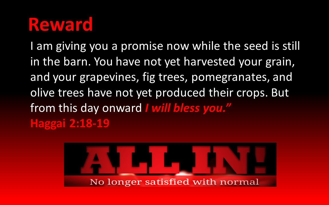 I am giving you a promise now while the seed is still in the barn.