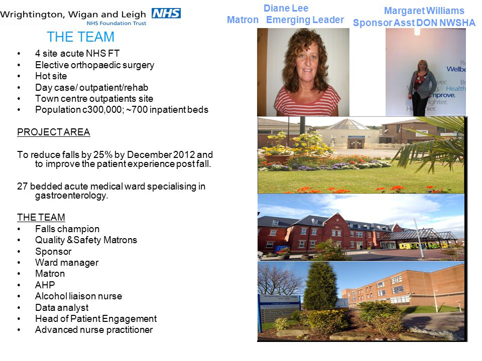 4 site acute NHS FT Elective orthopaedic surgery Hot site Day case/ outpatient/rehab Town centre outpatients site Population c300,000; ~700 inpatient beds PROJECT AREA To reduce falls by 25% by December 2012 and to improve the patient experience post fall.