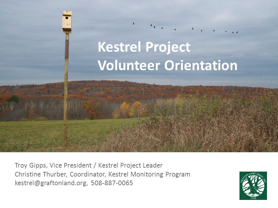 Agenda Welcome/Introductions Project Overview – Why kestrels.