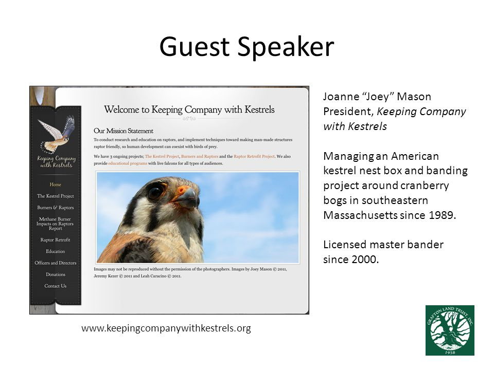 """Guest Speaker Joanne """"Joey"""" Mason President, Keeping Company with Kestrels Managing an American kestrel nest box and banding project around cranberry"""