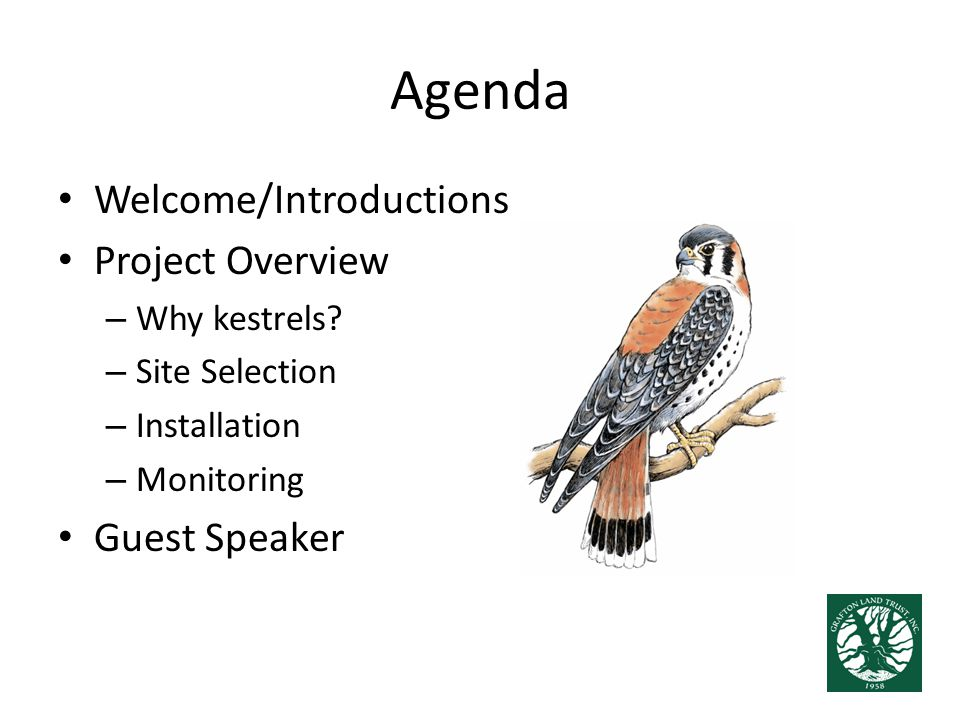 Agenda Welcome/Introductions Project Overview – Why kestrels? – Site Selection – Installation – Monitoring Guest Speaker