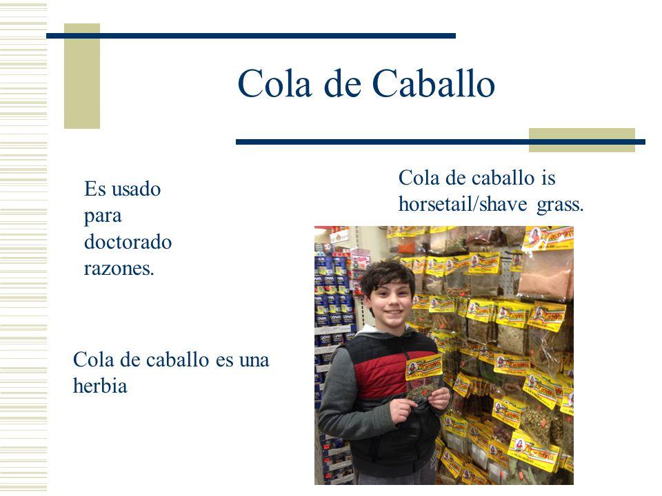 Cola de Caballo Cola de caballo is horsetail/shave grass.