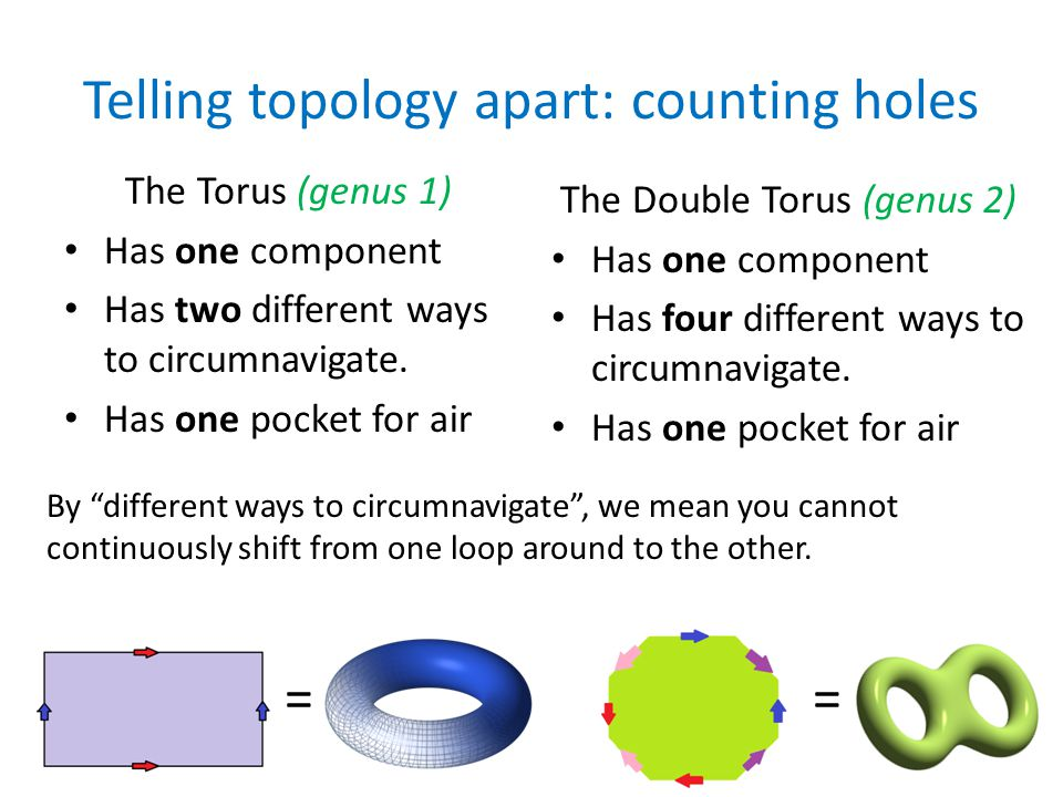 Telling topology apart: counting holes The Torus (genus 1) Has one component Has two different ways to circumnavigate.