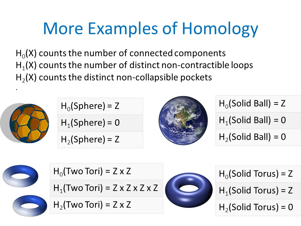 More Examples of Homology H 0 (Sphere) = Z H 1 (Sphere) = 0 H 2 (Sphere) = Z H 0 (Solid Ball) = Z H 1 (Solid Ball) = 0 H 2 (Solid Ball) = 0 H 0 (Two Tori) = Z x Z H 1 (Two Tori) = Z x Z x Z x Z H 2 (Two Tori) = Z x Z H 0 (Solid Torus) = Z H 1 (Solid Torus) = Z H 2 (Solid Torus) = 0 H 0 (X) counts the number of connected components H 1 (X) counts the number of distinct non-contractible loops H 2 (X) counts the distinct non-collapsible pockets.
