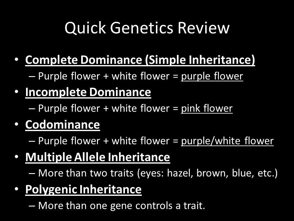 Quick Genetics Review Complete Dominance (Simple Inheritance) – Purple flower + white flower = purple flower Incomplete Dominance – Purple flower + wh